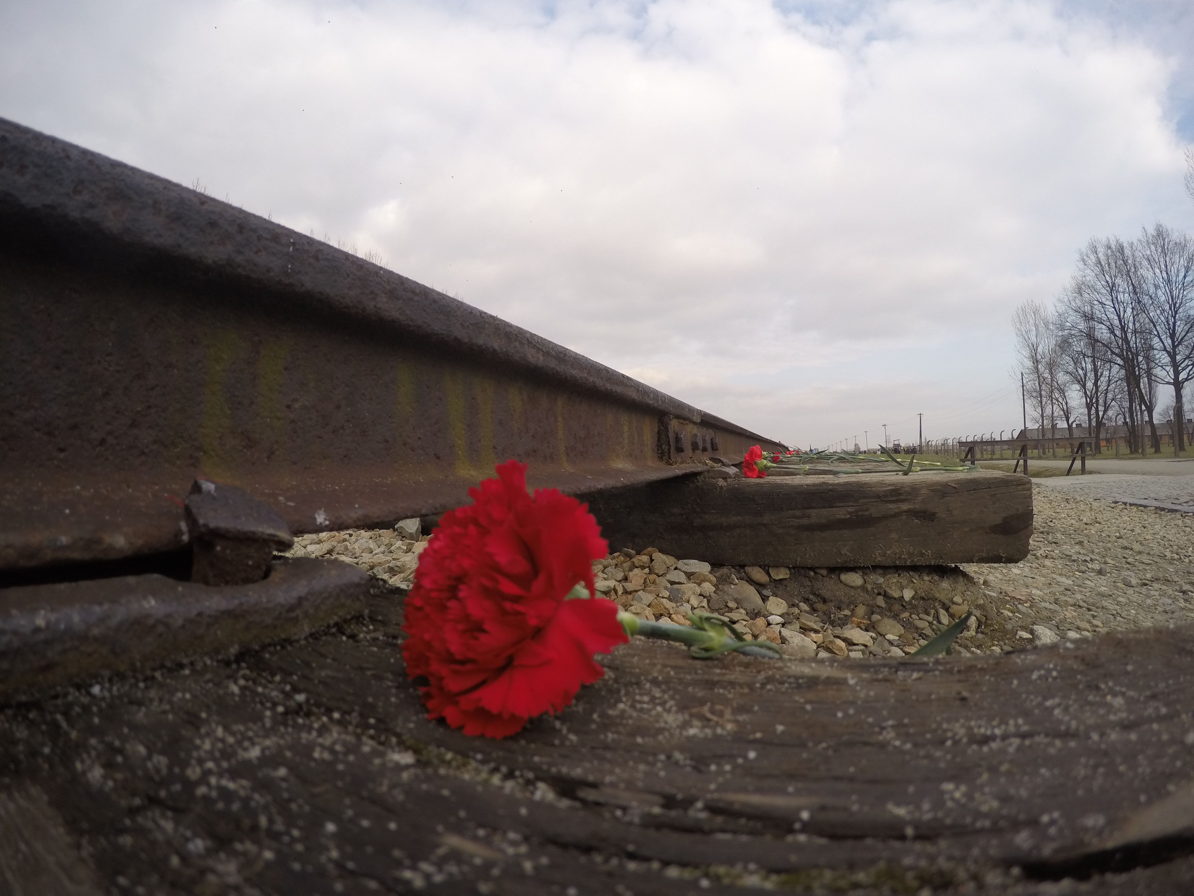 The roses and candles were placed on each wood panel of the tracks