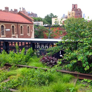 The High Line/Chelsea Pier
