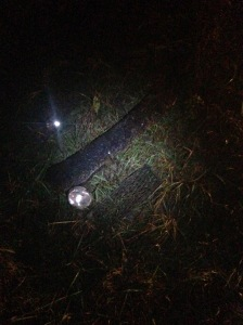 These were some parts of the car we were able to find with a flashlight about 20 yards from the crash. This means these parts had been thrown around during the spinning and hydroplaning.
